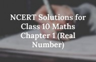 NCERT Solutions for Class 10 Maths Chapter 1 (Real Number)