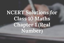 NCERT Solutions for Class 10 Maths-min - Copy